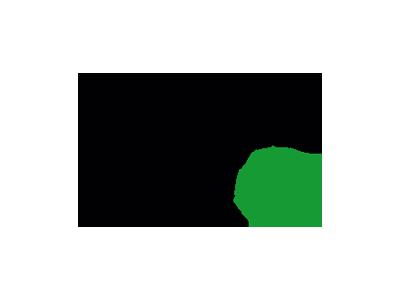 Deutsche Verkehrswacht Logo